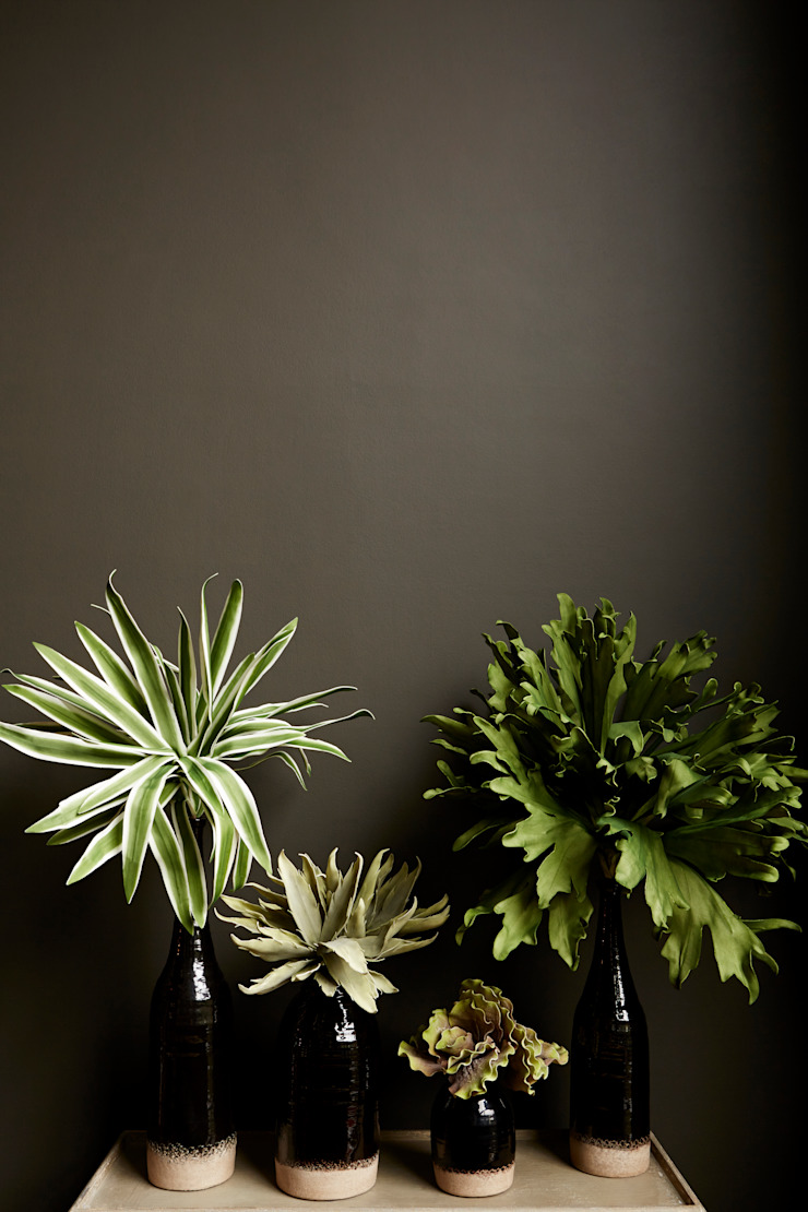 Faux botanicals: eclectic  by Abigail Ahern, Eclectic