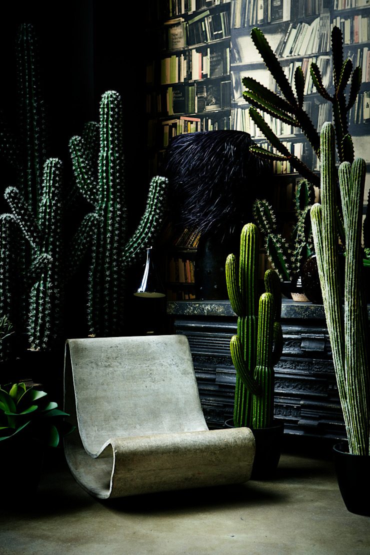 Abigail Ahern faux cactus collection: eclectic  by Abigail Ahern, Eclectic