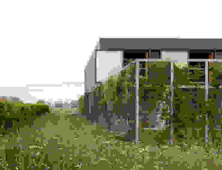 ラスティックな 庭 の OFFICE Kersten Geers David Van Severen ラスティック