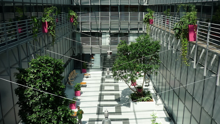 Pflanzen: Botschafter der Gesundheit im Zahnklinikum Münster die Raumbegrüner Mediterrane Kongresscenter
