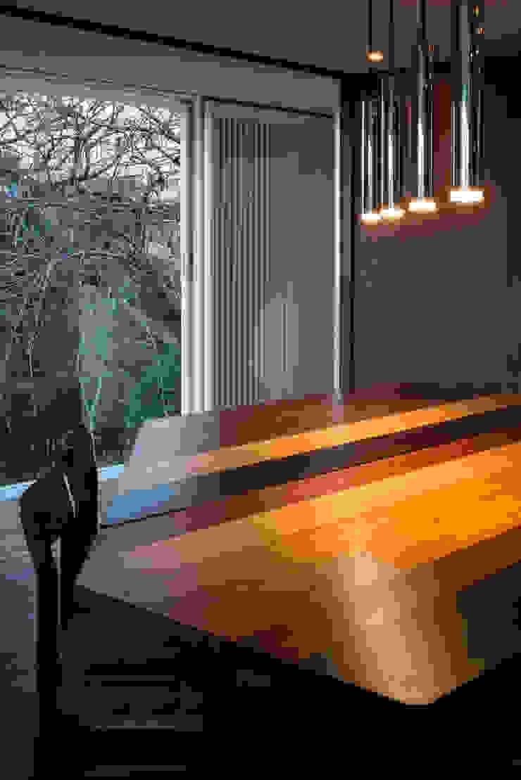 駒場の家 モダンデザインの ダイニング の 山崎壮一建築設計事務所 モダン