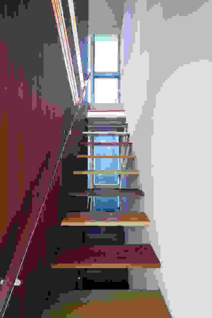 駒場の家 モダンスタイルの 玄関&廊下&階段 の 山崎壮一建築設計事務所 モダン