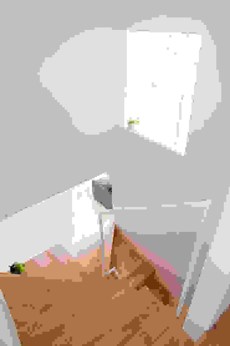 羽ノ浦のいえ CALL SPACE DESIGN オリジナルスタイルの 玄関&廊下&階段