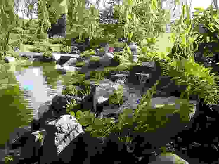 Wasser im Garten, Koiteich:  Garten von japan-garten-kultur,Asiatisch