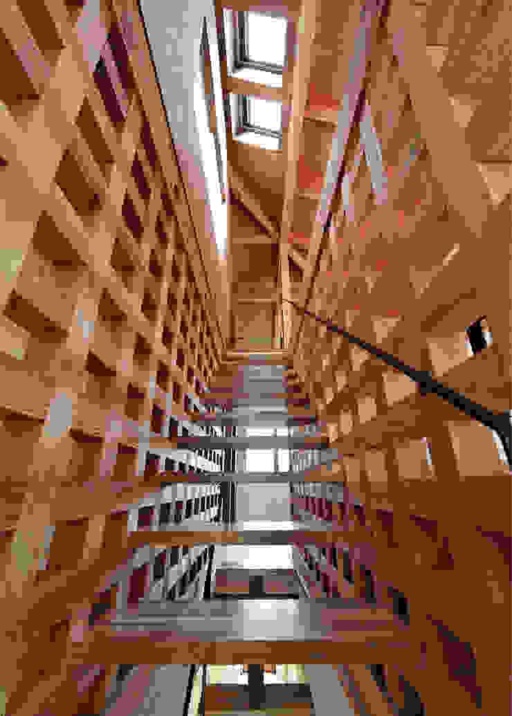 谷間の家 モダンスタイルの 玄関&廊下&階段 の 株式会社 長野総合建築事務所 モダン