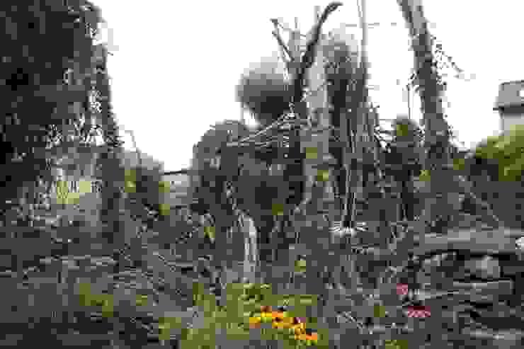 Spätsommer Tropischer Garten von Gartenarchitekturbüro Timm Tropisch