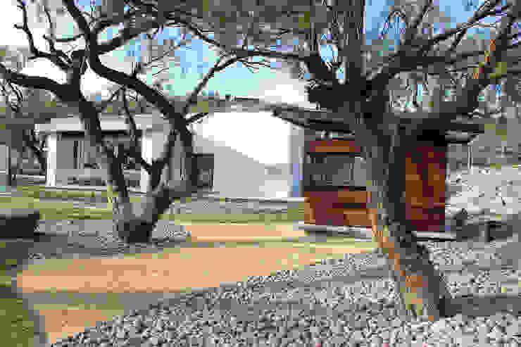 Jardines modernos: Ideas, imágenes y decoración de VG+VM Arquitectos Moderno