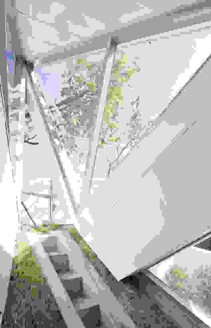 IROJE KIMHYOMAN Pintu & Jendela Modern