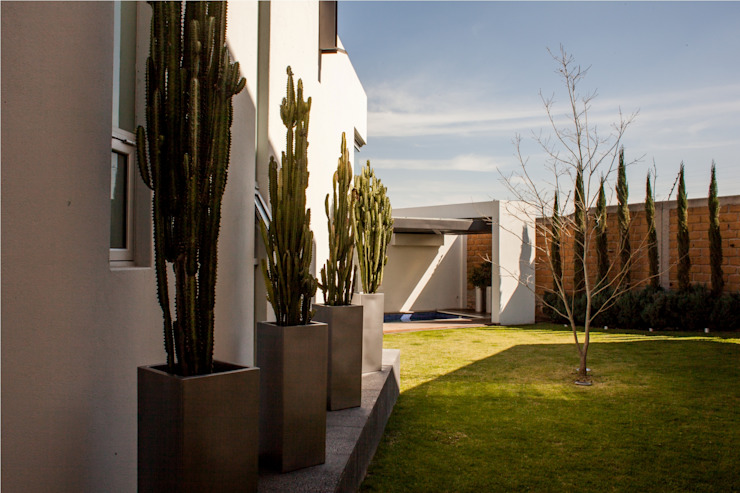 Acceso a Jardín Jardines de estilo moderno de GRUPO VOLTA Moderno