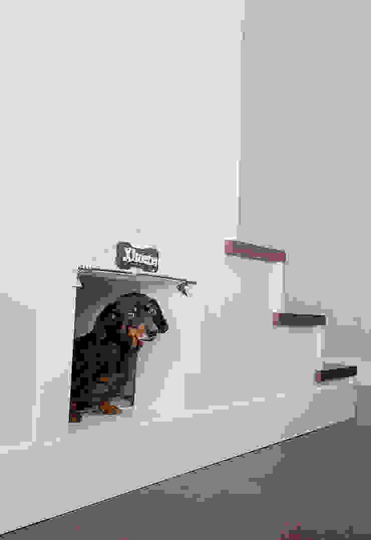 Escaleras con hueco para caseta de perro Pasillos, vestíbulos y escaleras de estilo moderno de Canexel Moderno