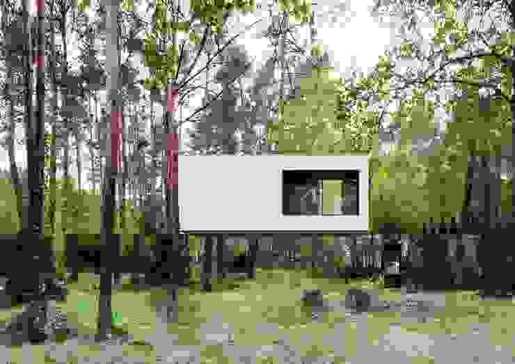 現代房屋設計點子、靈感 & 圖片 根據 REFORM Architekt Marcin Tomaszewski 現代風
