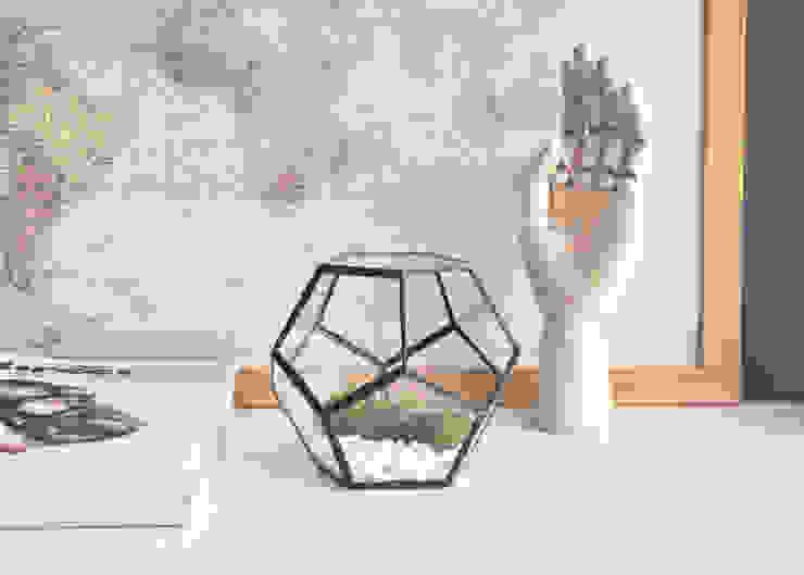 Terrario Dodecaedro pequeño de ZetaGlass Moderno Vidrio