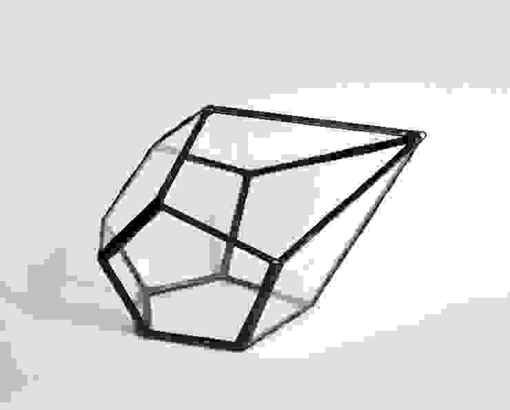 Terrario Drop de ZetaGlass Moderno Vidrio