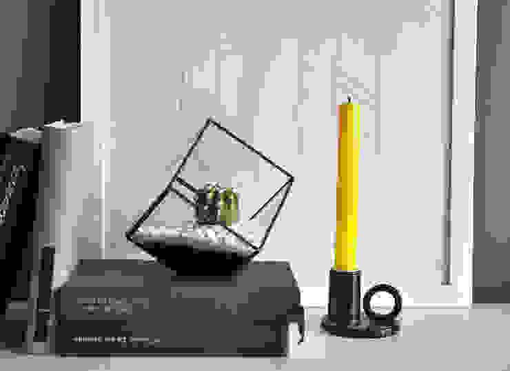 Terrario Cubo:  de estilo industrial de ZetaGlass, Industrial Vidrio