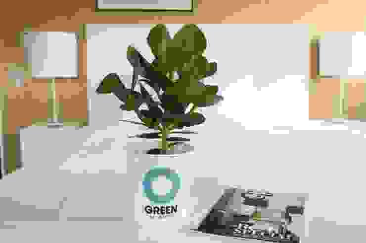 Ogreen:  tarz Oturma Odası,