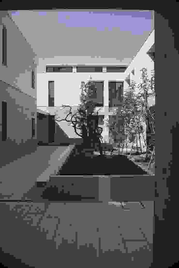 Le fraisier: ディーフォーエム建築設計事務所/D4m architect officeが手掛けた現代のです。,モダン