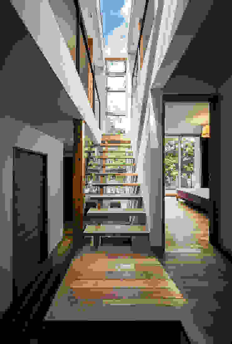 クレバスハウス クレバスをイメージした階段ホール モダンスタイルの 玄関&廊下&階段 の 株式会社seki.design モダン
