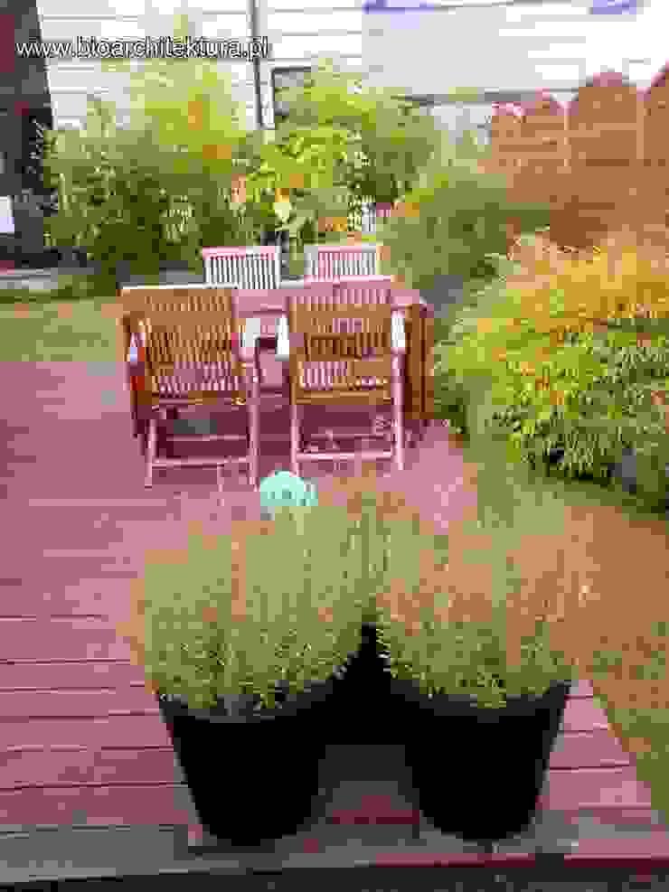 Bioarchitektura - Ogrody, Krajobraz, Zieleń we wnętrzach Balconies, verandas & terraces Plants & flowers