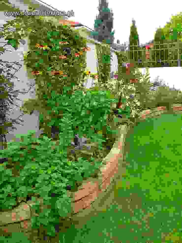 Bioarchitektura - Ogrody, Krajobraz, Zieleń we wnętrzach Mediterranean style garden
