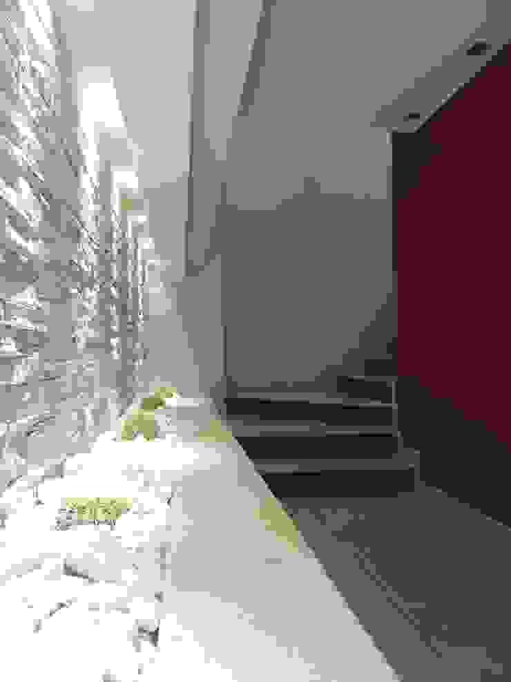 Scala di ingresso di Nadia Moretti Moderno