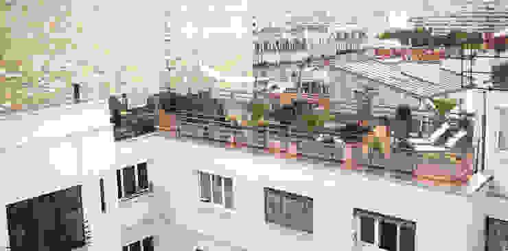 Aménagement D Un Toit Terrasse à Paris Par Rm Architecte