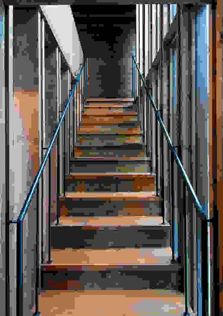 中浦和の住宅 モダンスタイルの 玄関&廊下&階段 の 井上洋介建築研究所 モダン