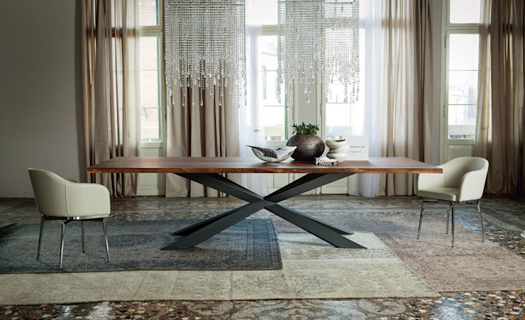Spyder Wood Table by Cattelan Italia: modern  by Campbell Watson, Modern