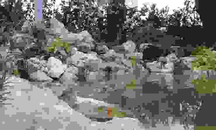 Agua fluyendo de Acuapaisajes Clásico