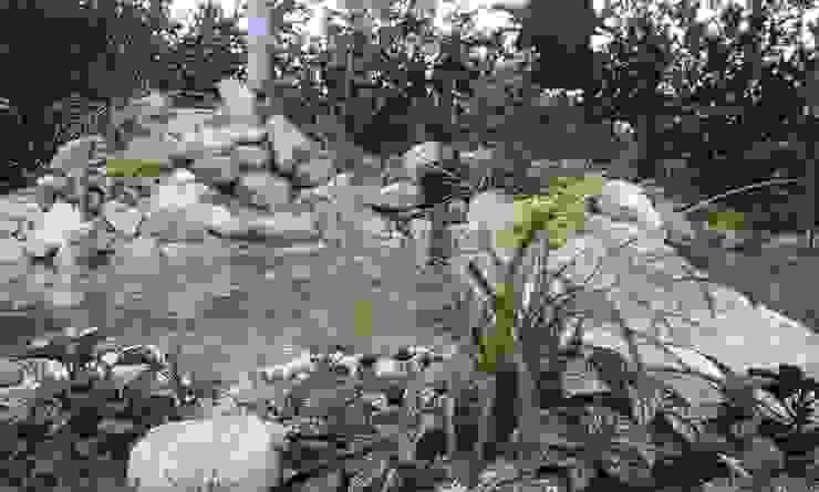 Cascada de Acuapaisajes Clásico