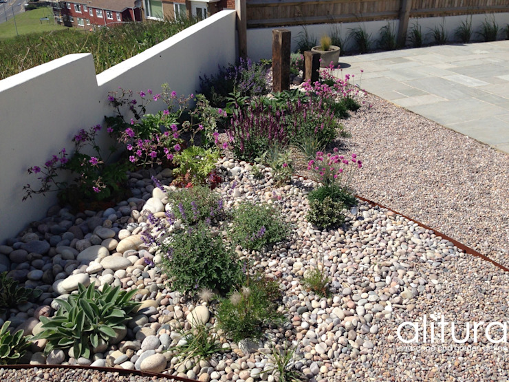 Right Plant Right Place Modern garden by Alitura Landscape and Garden Design Modern