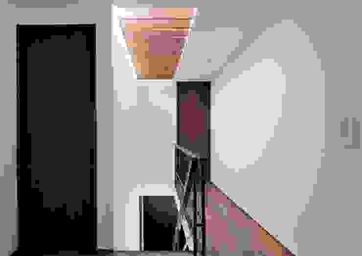 八幡山の住宅 モダンスタイルの 玄関&廊下&階段 の 井上洋介建築研究所 モダン