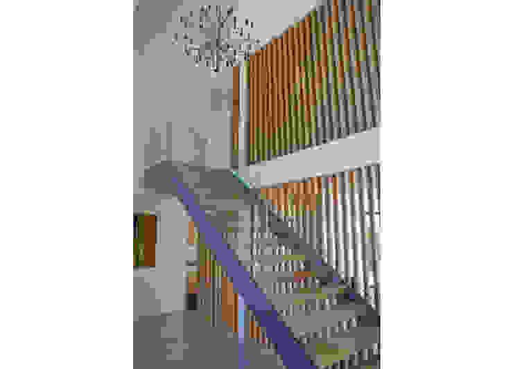 'Windrush' Derbyshire Modern corridor, hallway & stairs by Rayner Davies Architects Modern