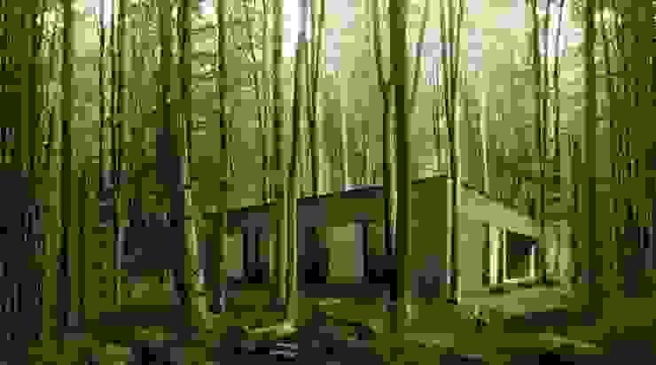 Dom w lesie Minimalistyczne domy od 081 architekci Minimalistyczny