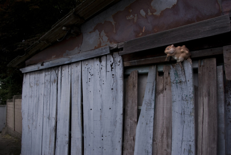 Beautiful Creatures, mixed media, 가변크기 ,2008: propandas의 현대 ,모던
