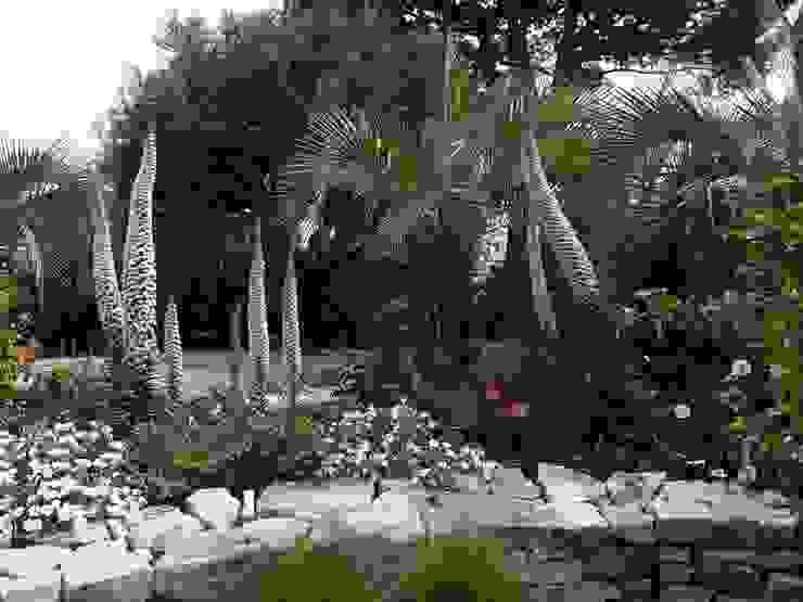 Nazarian Espaces Verts Minimalist style garden