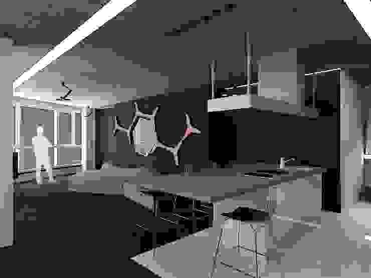 Cocinas minimalistas de (DZ)M Интеллектуальный Дизайн Minimalista