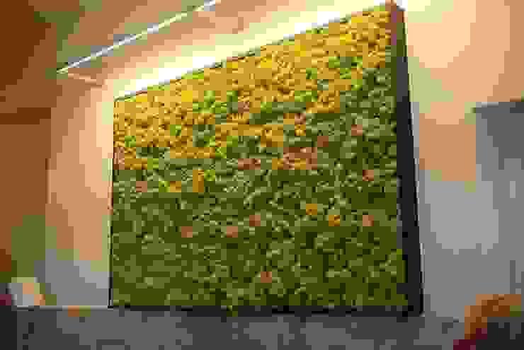 7 Yıl Boyunca Canlı ve Doğal Butik Bahçe Dikey Bahçe ve Peyzaj Tasarımları Minimalist