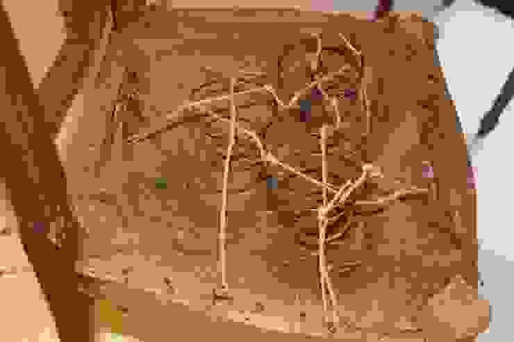 En el taller DVM Restauración sí conservamos el antiguo sistema de muelles y coca de arpillera y crin para retapizar antiguos muebles de Dominique Restauración