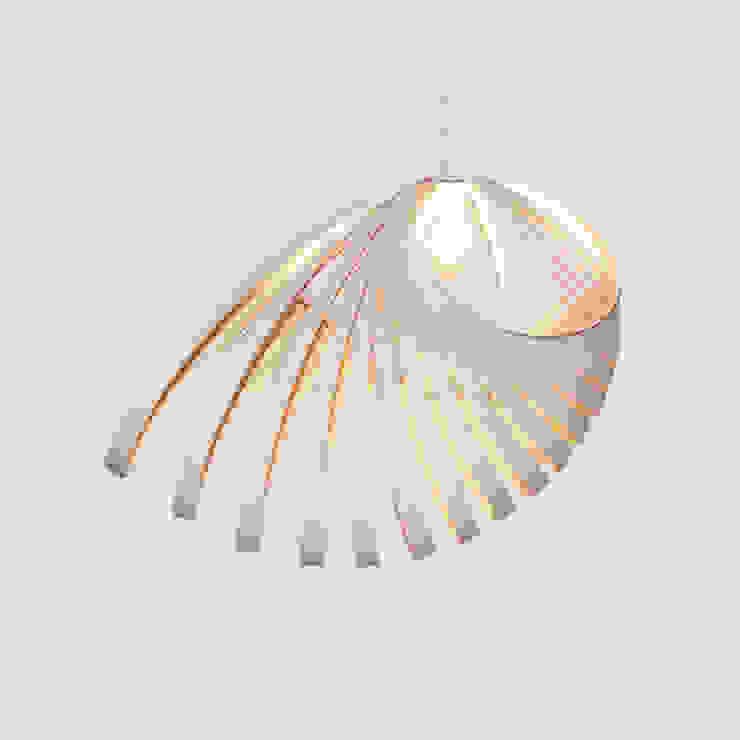 Birch Ply Nautica - Light Shade: modern  by Kaigami, Modern