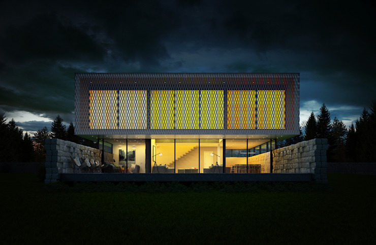 Black&White ALEXANDER ZHIDKOV ARCHITECT Дома в стиле минимализм