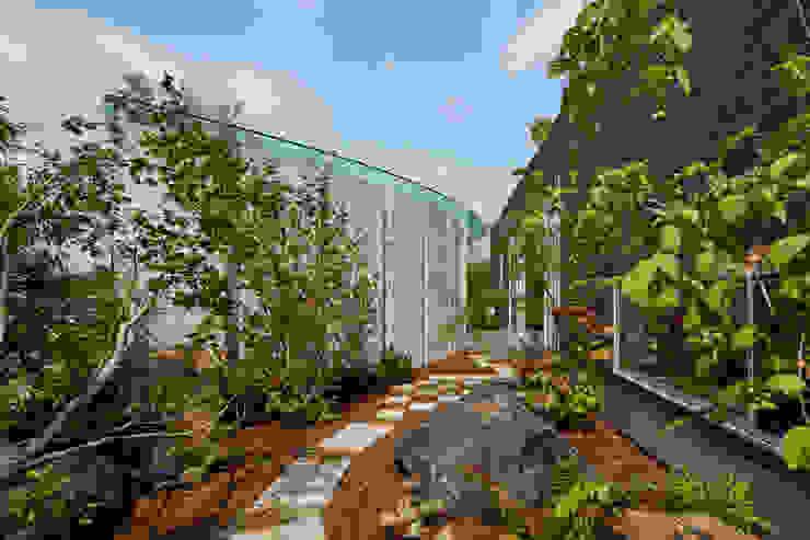 日本庭園 モダンな庭 の Mアーキテクツ|高級邸宅 豪邸 注文住宅 別荘建築 LUXURY HOUSES | M-architects モダン
