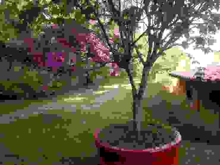 CASA NO CAMPO Jardins campestres por Kika Prata Arquitetura e Interiores. Campestre