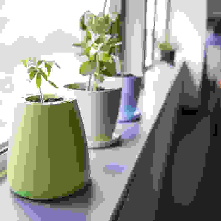 Eco Potagator: modern  by ashortwalk, Modern