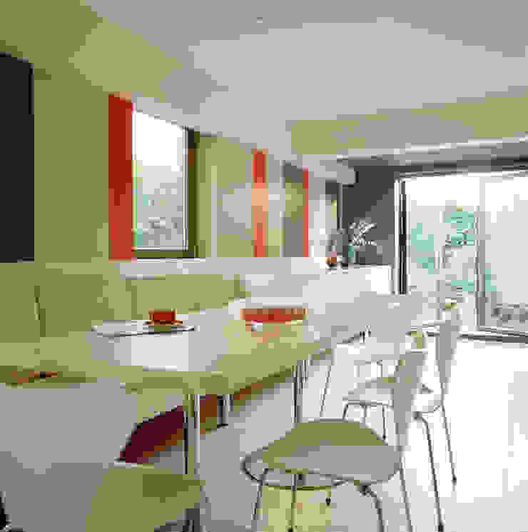 Highgate House - 3 Modern kitchen by Jonathan Clark Architects Modern