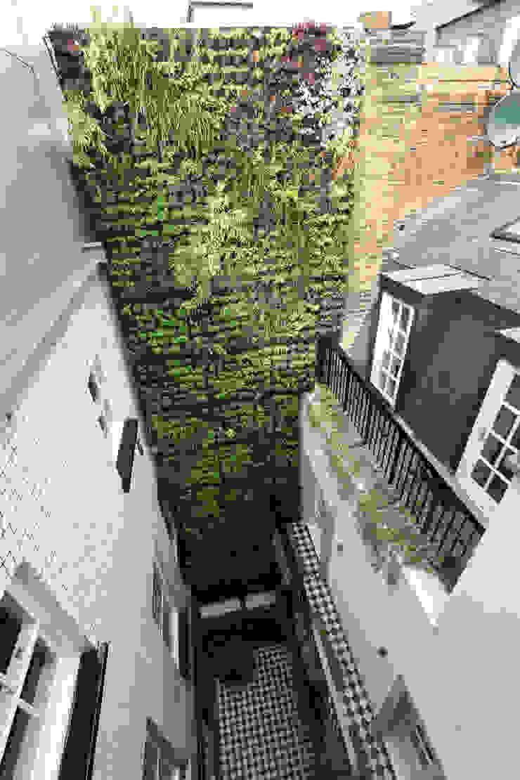 Luxury London penthouse Alex Maguire Photography Modern garden
