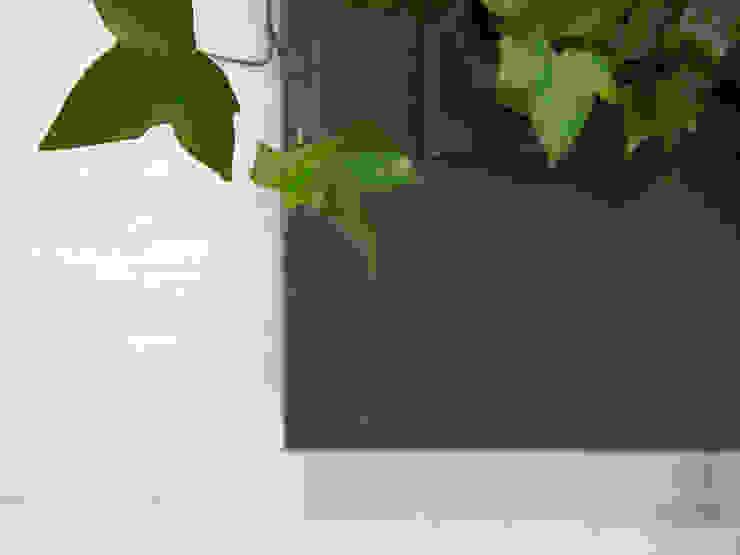 Florama czarna detal od FLORABO2 Klasyczny