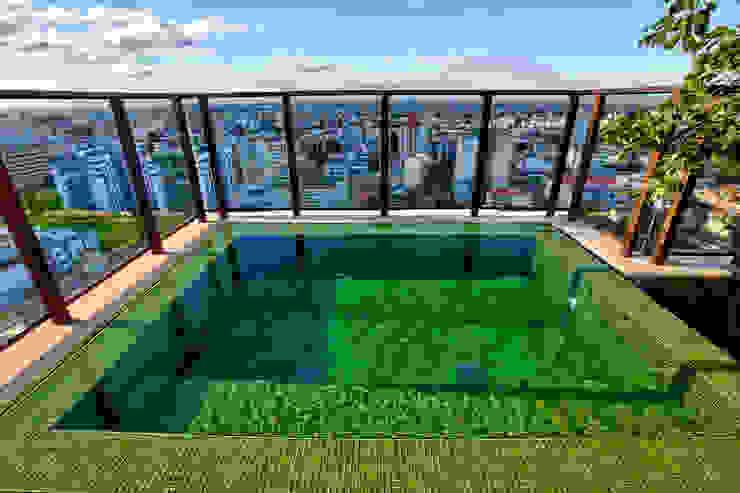 Tellini Vontobel Arquitetura Modern Pool