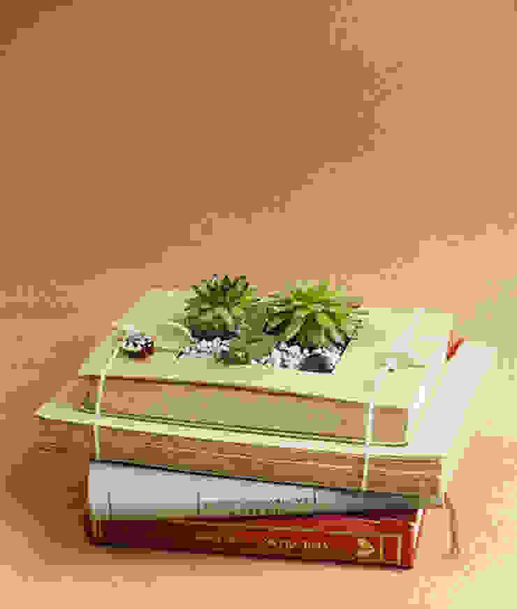 Kitap saksı Terraqua Design Klasik