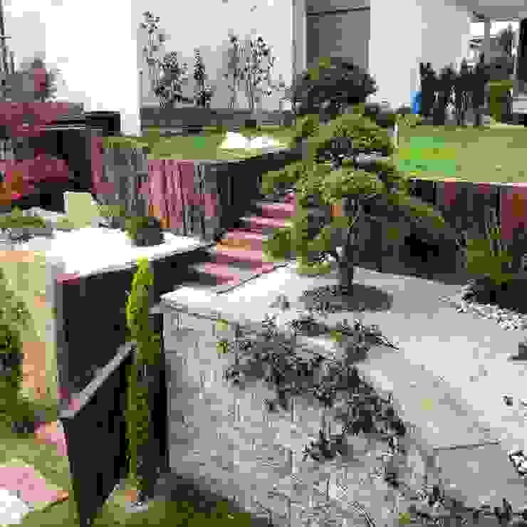Moderne tuinen van abelia peyzaj Modern