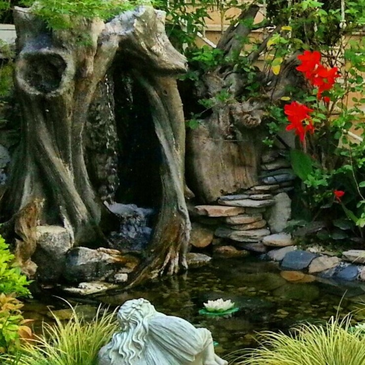 acarkent Modern Bahçe abelia peyzaj Modern